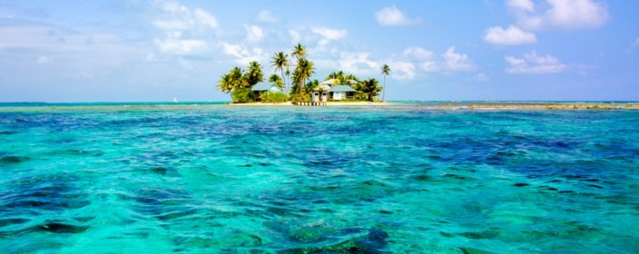 Bird Island in Belize