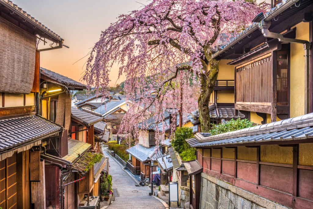 Kirschblüte in Kyoto, Japan