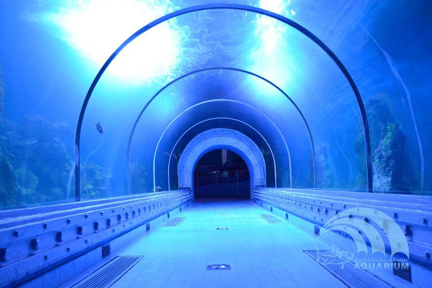 hga tunnel fische