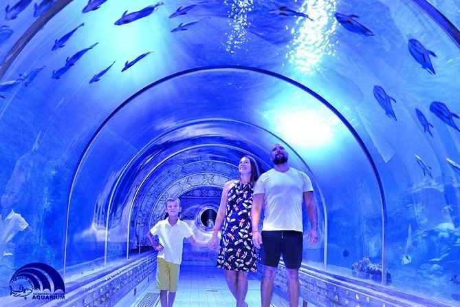 Unterwassertunnel im Hurghada Grand Aquarium