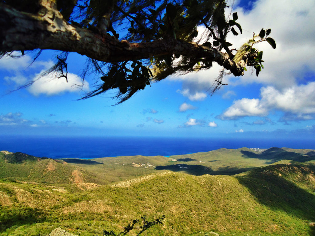Nationalpark Christoffel Park auf Curacao