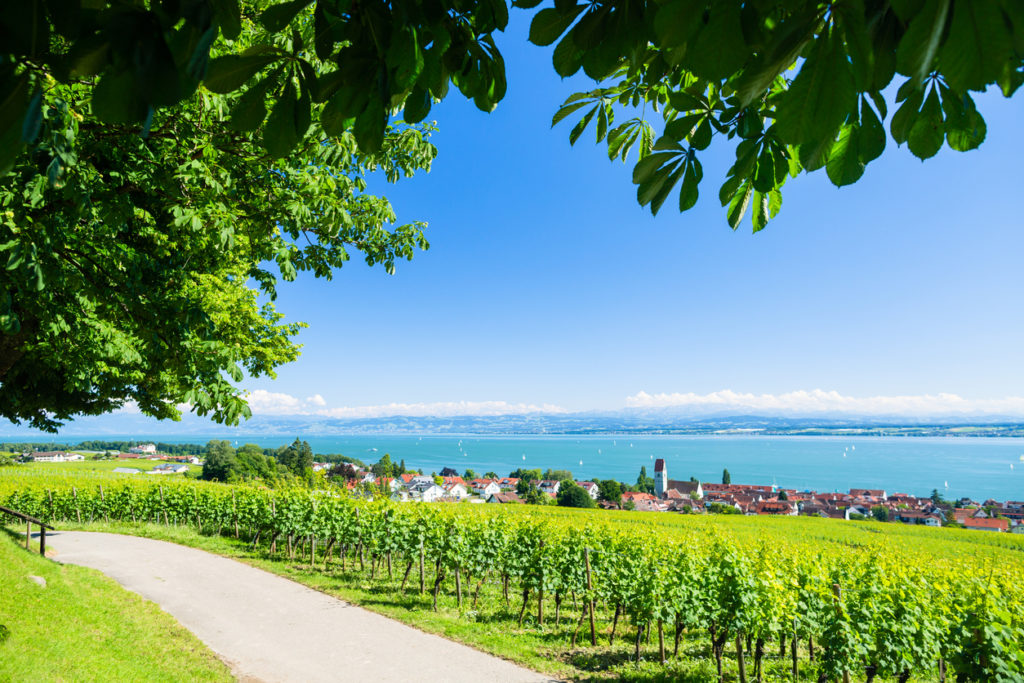 View on Bodensee with alp mountain range in background