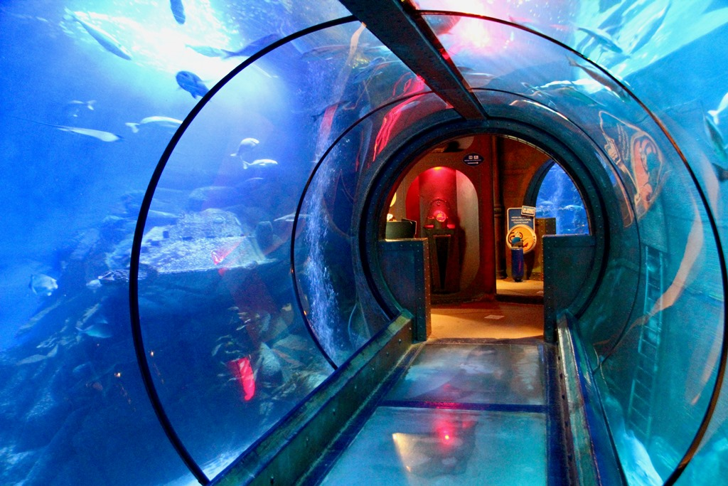 sea life berlin tunnel