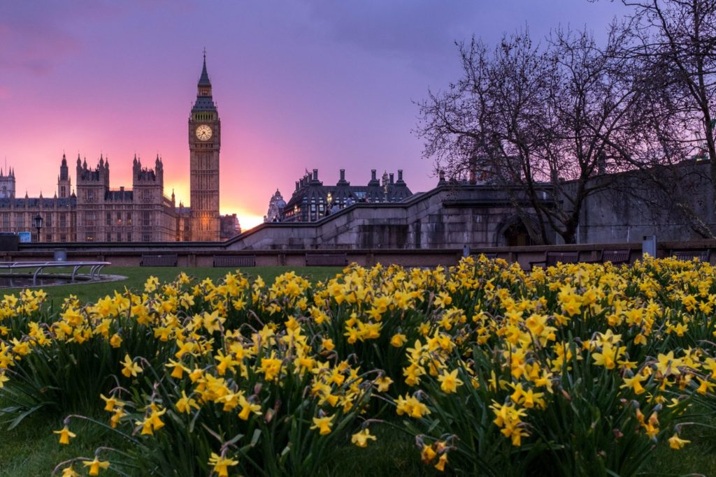 Der Elizabeth Tower und Big Ben am Abend, London
