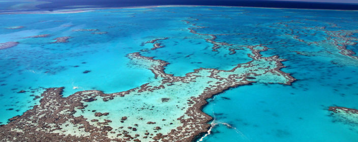 Great Barrier Reef Tipps
