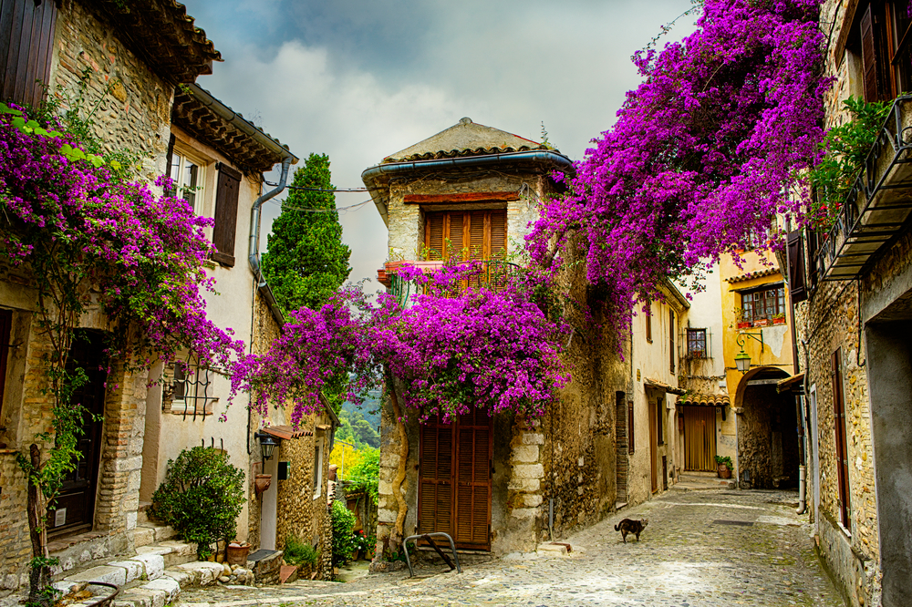 Frankreich, Provence